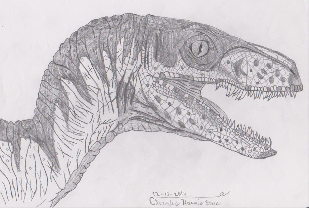 raptor blue coloring pages - photo#13
