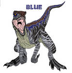 Raptor Blue
