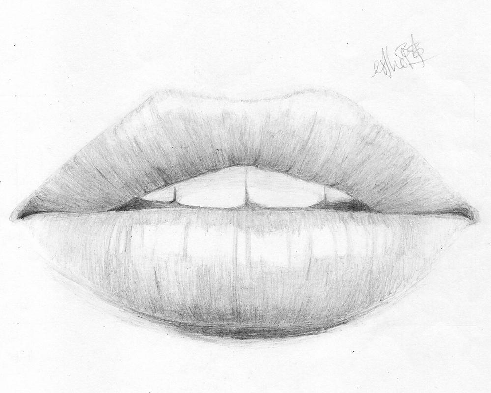 Line Drawing Lips : Realistic lips by queenolympia on deviantart