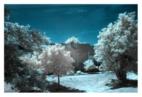 Infra Red Landscape Test I by milopodesta