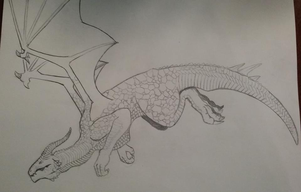 Dragon Age Dragon in Flight by PocketshNa