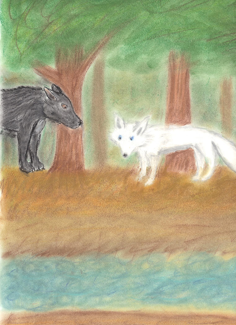 Fox and Wolf by Rionionin