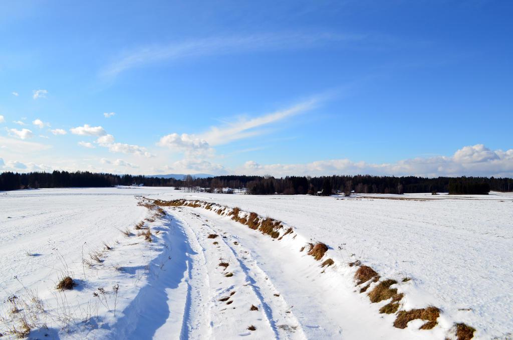 Winter Path by Ren10sei