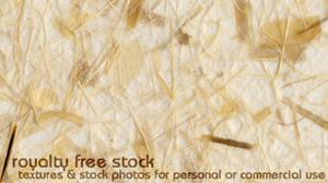 Royalty Free Stock