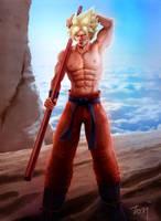 Son Goku by tori33