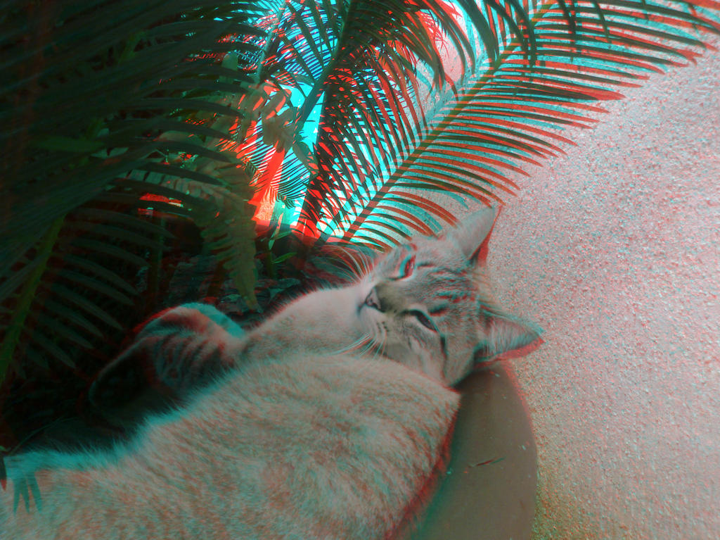 Cat-Paris Anaglyph by ZPsyc0 on DeviantArt