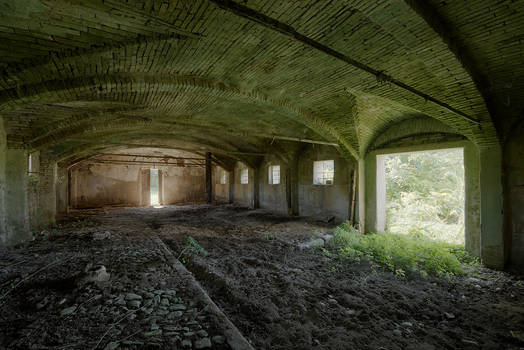 Abandoned stable - Green invading