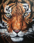 Acrylics Tiger Head
