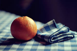Orange on Blue. by TinaApple