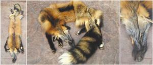 Mutation Ranch Cross Fox by reckIess