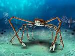 Mr. Crab