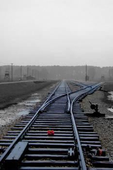 Understanding Auschwitz