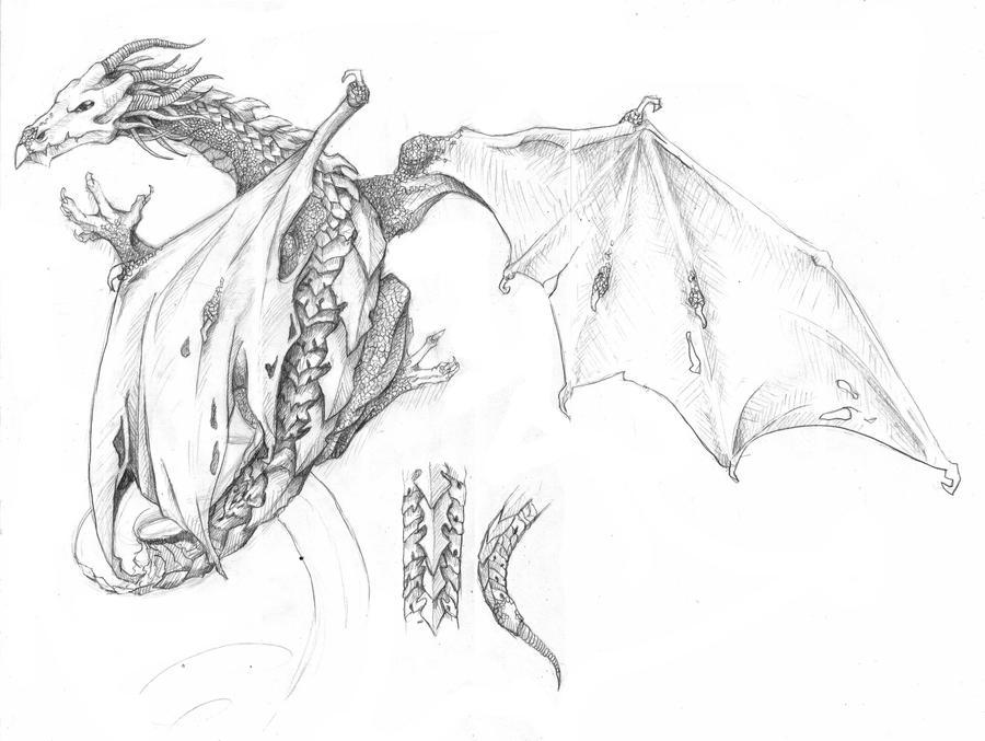 Dragon Tattoo Design By R E W A N On Deviantart
