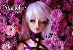 Blanche 005 _ Last chanche for Summer by Blanche4