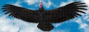 Roc Thunderbird 28x10