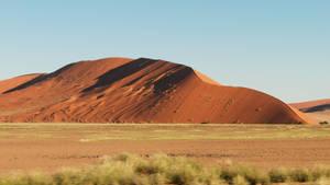 Mighty Dune