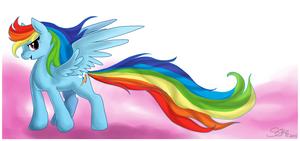 Dash's Rainbow