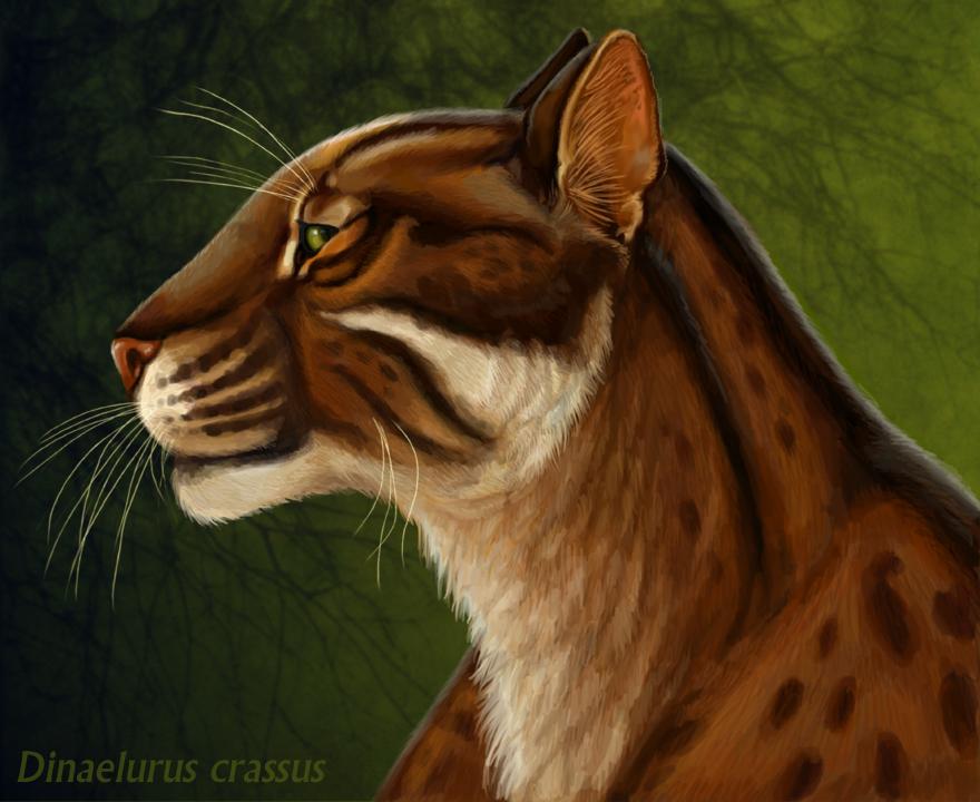 Dinaelurus crassus by Viergacht