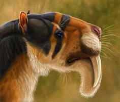 Thylacosmilus atrox by Viergacht