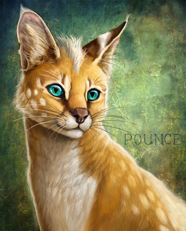 Pounce by Viergacht