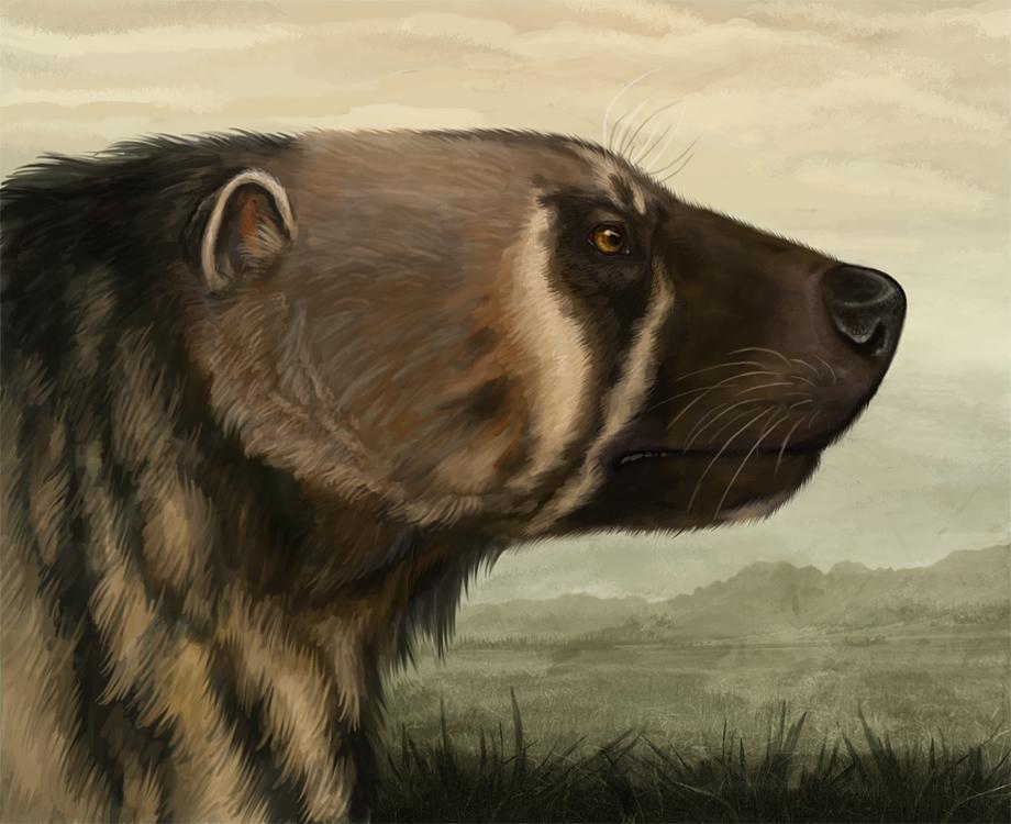 [G-H-I] Fauna III  Plesiogulo_crassa_by_viergacht-d4p4fik