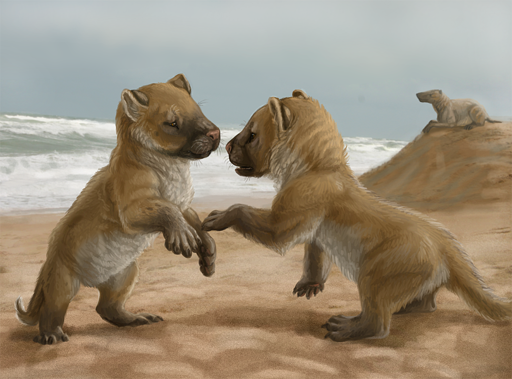 Andrewsarchus puppies by Viergacht on DeviantArt