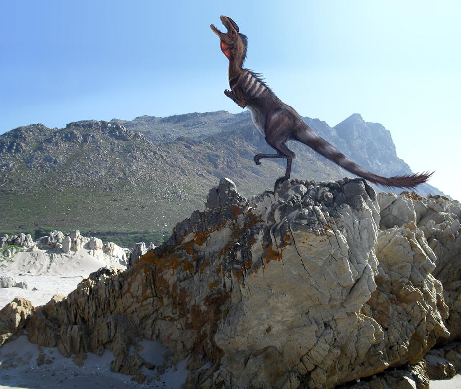 Megapnosaurus aka. Syntarsus by Viergacht