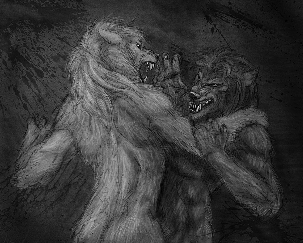 Werewolf Fight by Viergacht on DeviantArt