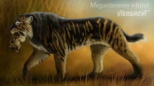 Megantereon whitei