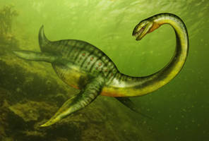Ankur Zafarasaura oceanis by Viergacht