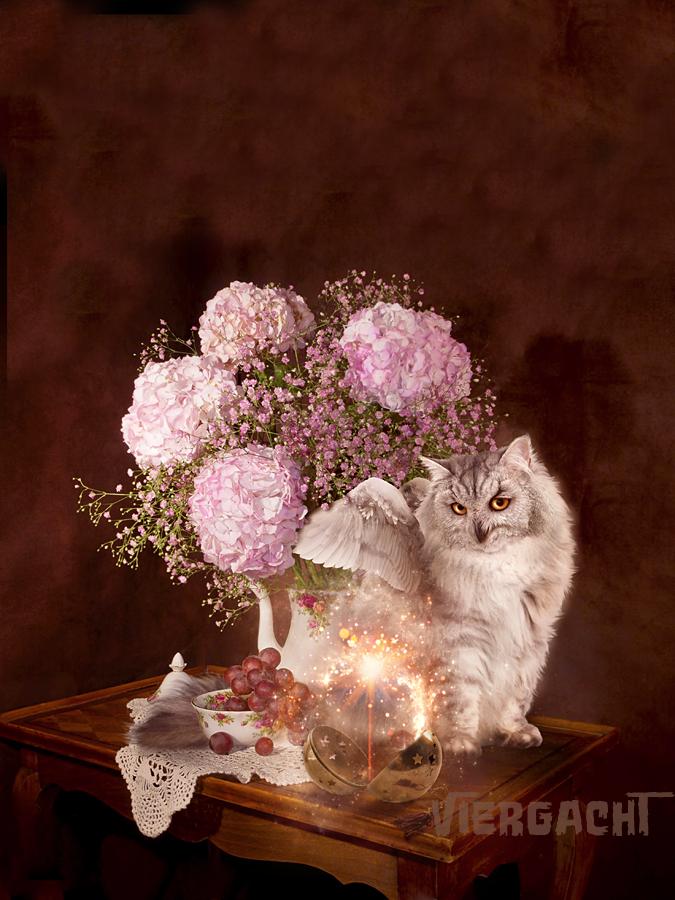 Cozy Fluffy Teatime Magic by Viergacht