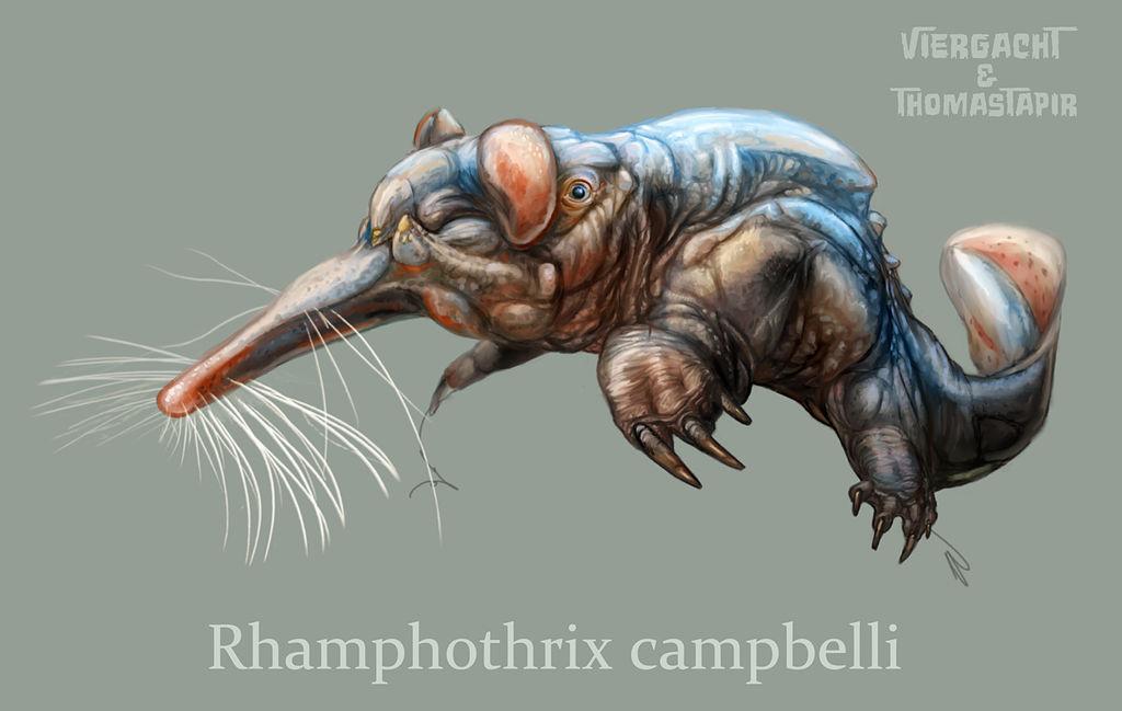 Rhamphothrix - Future Feline by Viergacht