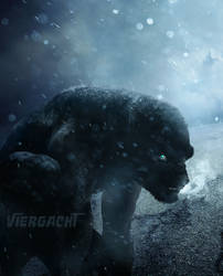 Why Did the Werewolf Cross Bray Road by Viergacht