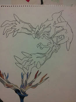 Yveltal preview