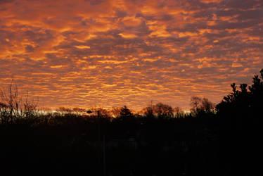 Friday Sunrise by slysnakesamhardy
