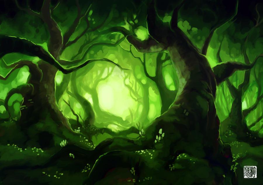 foggy forest wallpaper hd