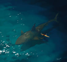 Encounter with the Shark God