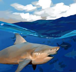 Predators in a blue paradise