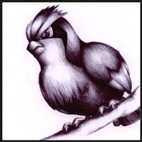 016 - Pidgey by Petah55