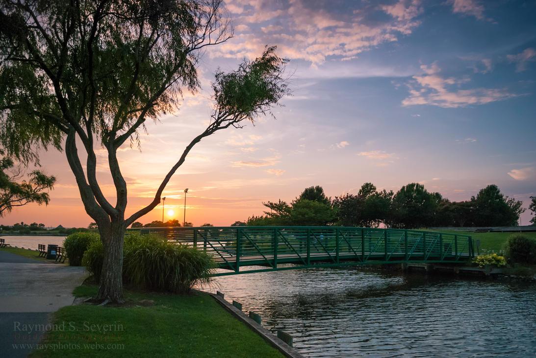 An Evening Walk in the Park by LenseMan