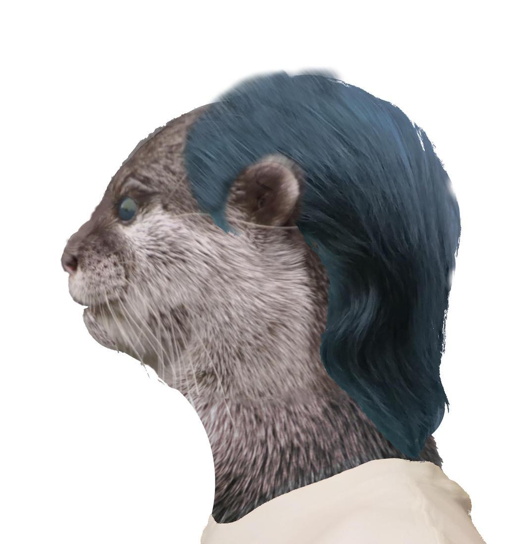 Otter Morph by KSchnee