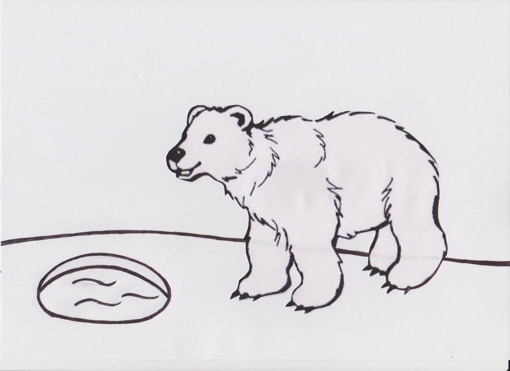 Dessin a colorier ours polaire by konekodragon on deviantart - Ours polaire dessin ...
