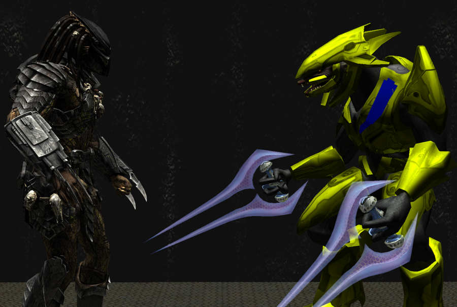 sangheili language Translated in both their native language and english  latest episode of spartan  ops may help uncover more words in the sangheili language.