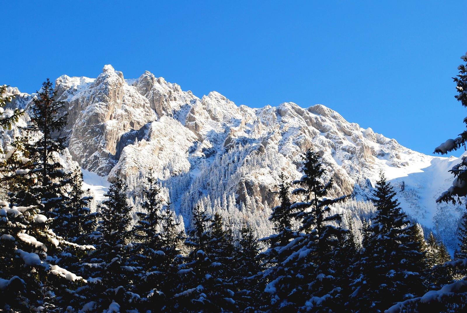http://fc03.deviantart.net/fs70/i/2011/036/f/7/winter_landscape_3_by_manekineko67-d38vngs.jpg