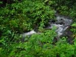Akaka Stream 1
