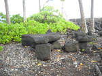 Stone Bench 1