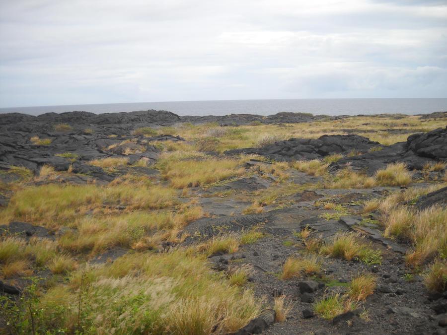 Lava Plain 11