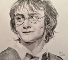 Harry Potter in Goblet of Fire by Annocent