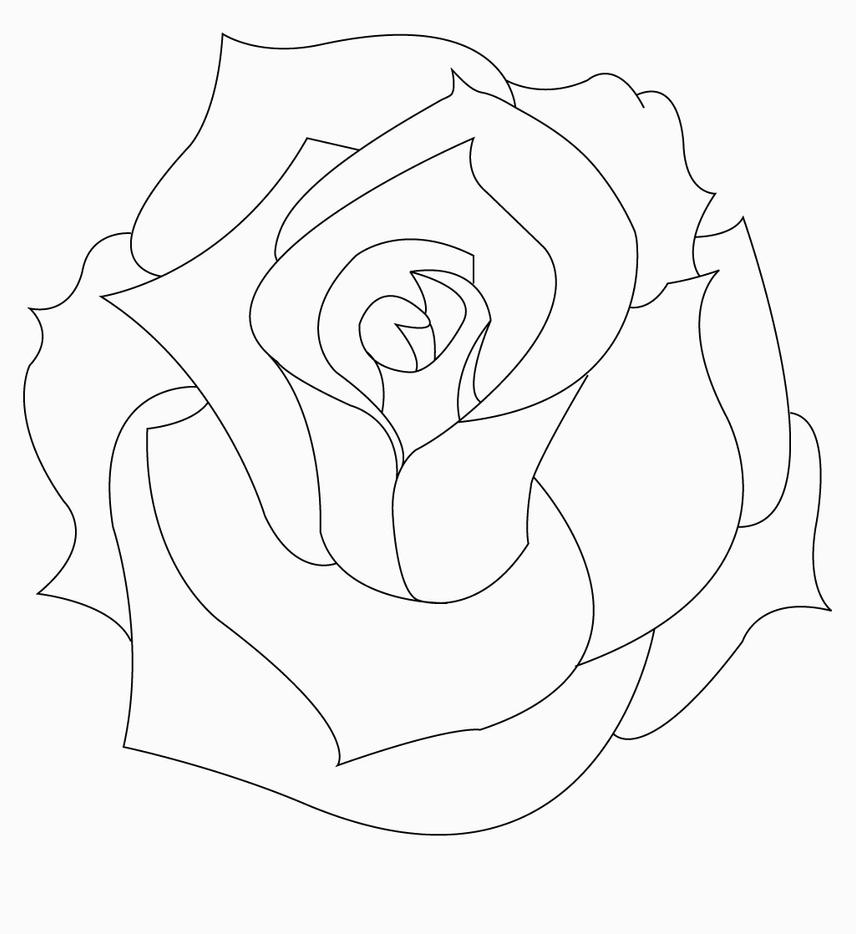 Tattoo Line Drawing Software : Rose by tmpg on deviantart