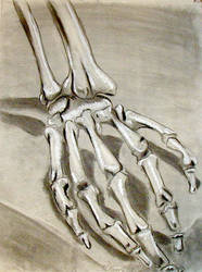 Bone Hand by BeckyLiv by BeckyLiv